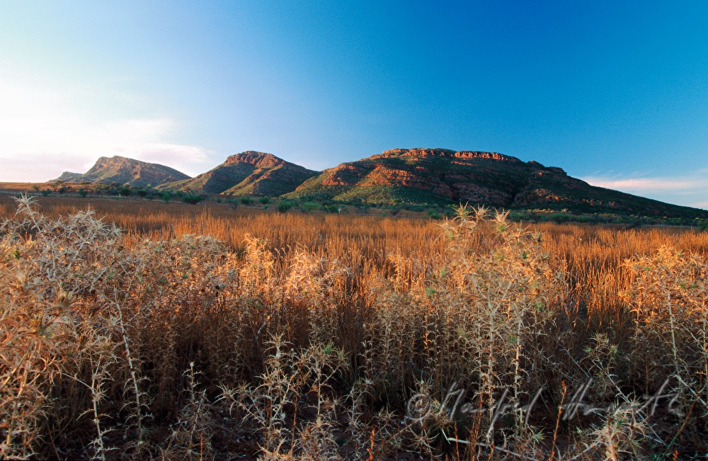 valley of the MacDonnell Ranges