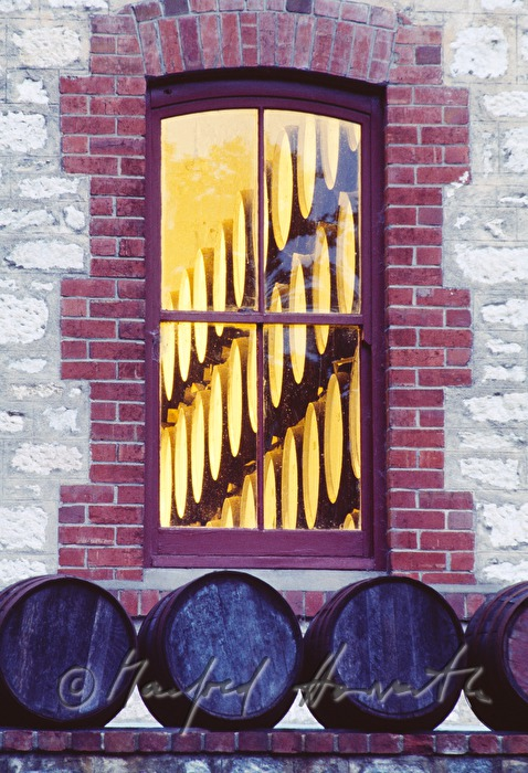 window to the wine cellar with wine barrels