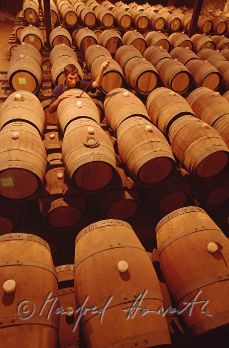 red wine is stored in barrique barrels