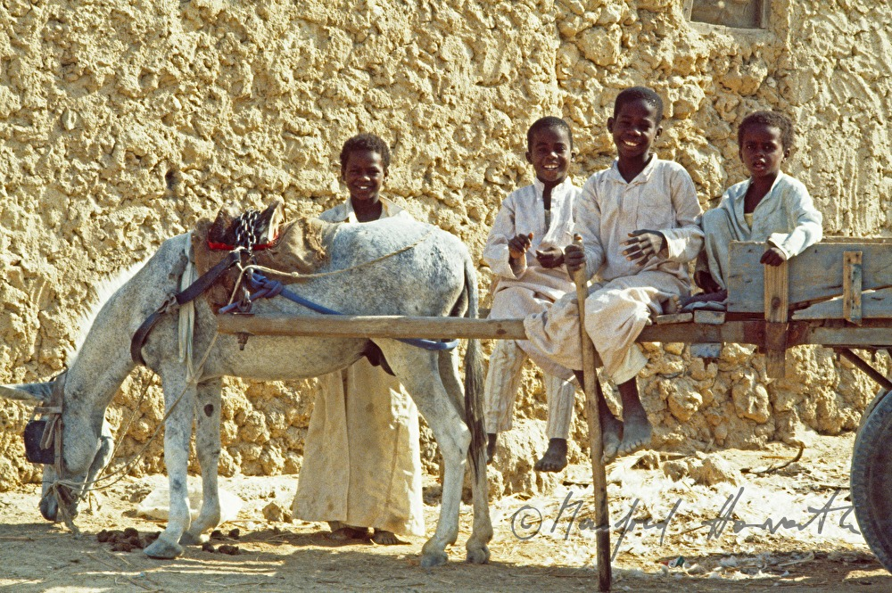boys with mule-drawn cart